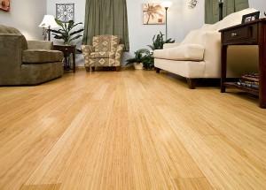 BellaWood Bamboo Flooring